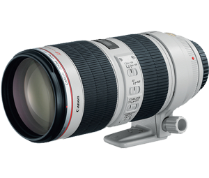 Canon 2751B002 EF 70 200mm f 2 8L IS My Sixth sense