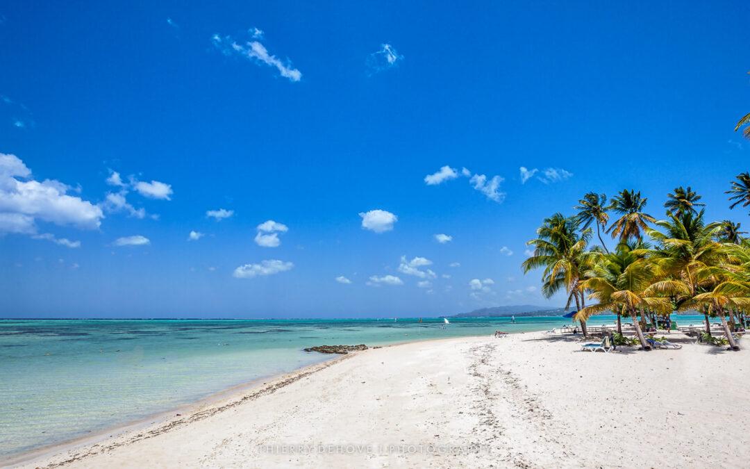 Tobago Photos