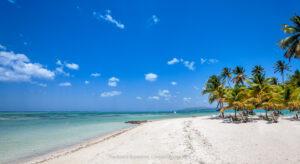 Tobago Photos Caribbean Beaches