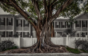 Key West Florida photos