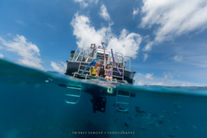 Ocean Underwater Images with AquaTech
